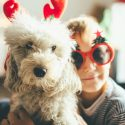 Pet Safety Holiday