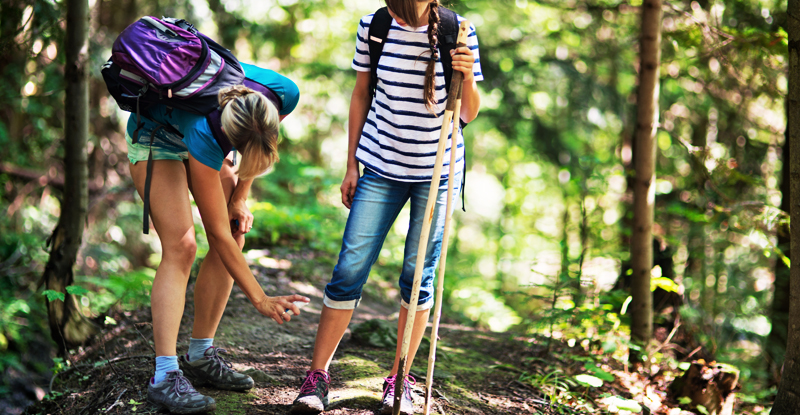 What To Do After A Tick Bite: Preventing Lyme Disease | UPMC